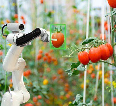 robots in precise farming