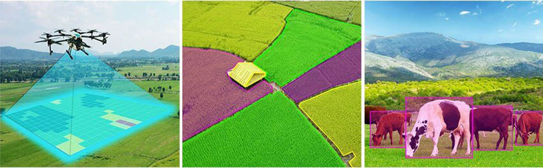 Aerial Field Mapping of Agricultural Fields