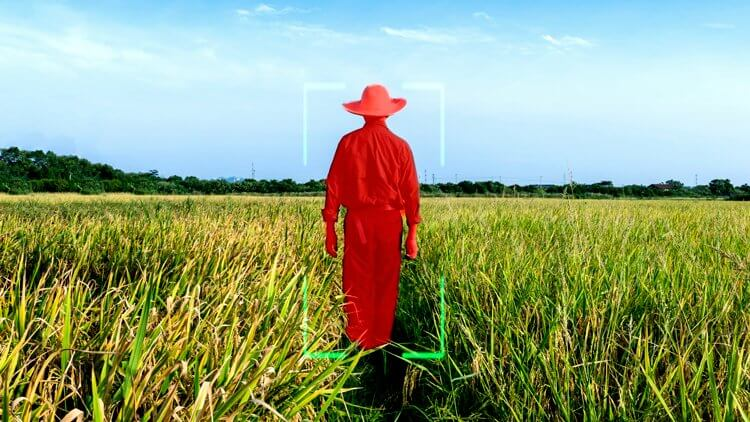 IMAGE ANNOTATION FOR MACHINE LEARNING IN AGRICULTURE