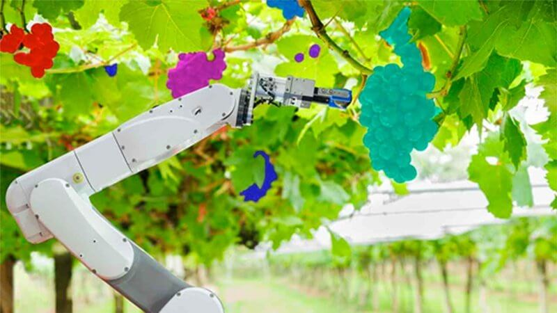 Robots for Precision Agriculture